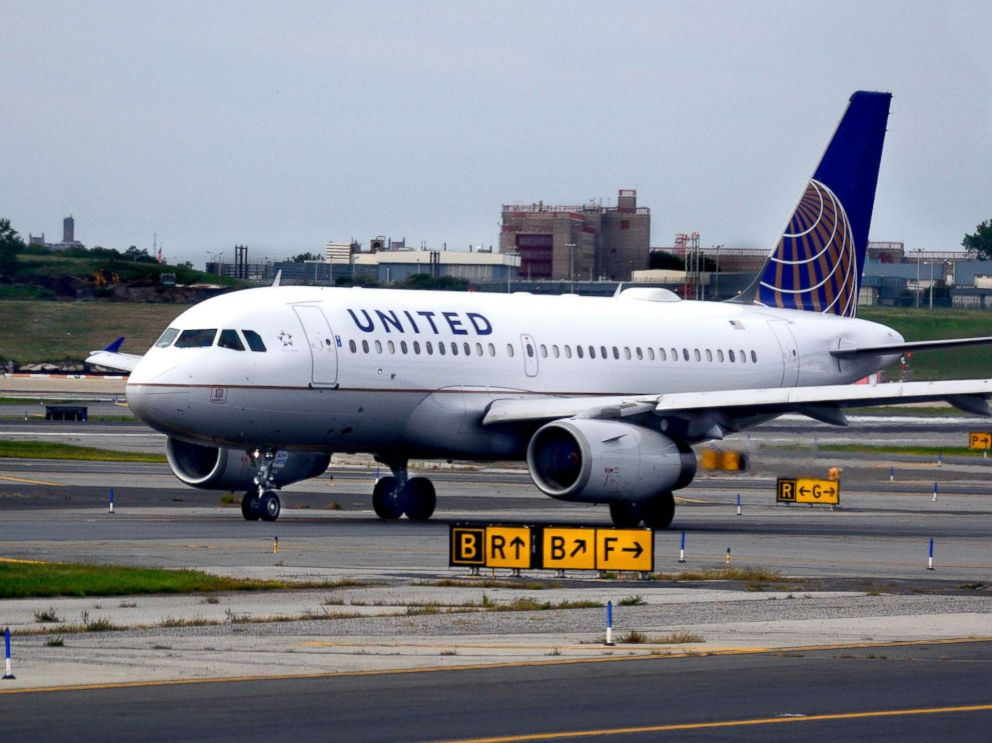 United airlines mistakenly flies kansas city bound dog to for Best airline to fly dogs
