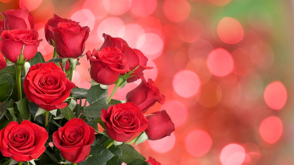 Roses is a classic Valentine's Day gift.