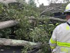 Over 500,000 without power as nor'easter bashes New England