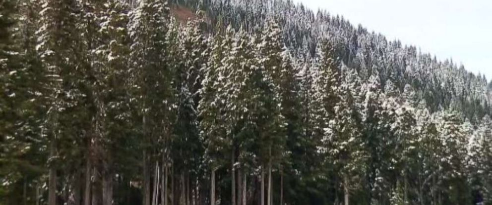 Washington state just saw its first snow of the season.