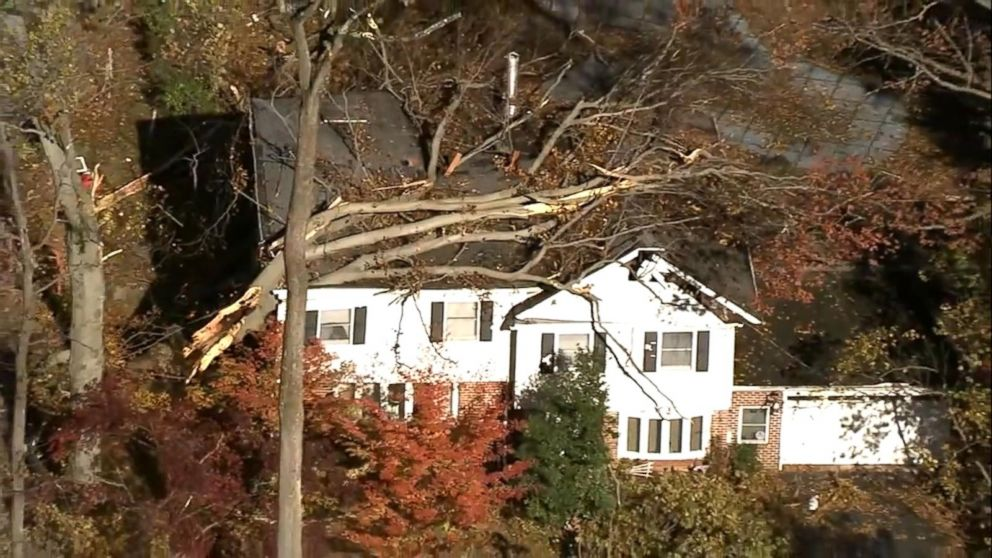 PHOTO: Severe weather brought down trees and power lines in the Northeast over the weekend.
