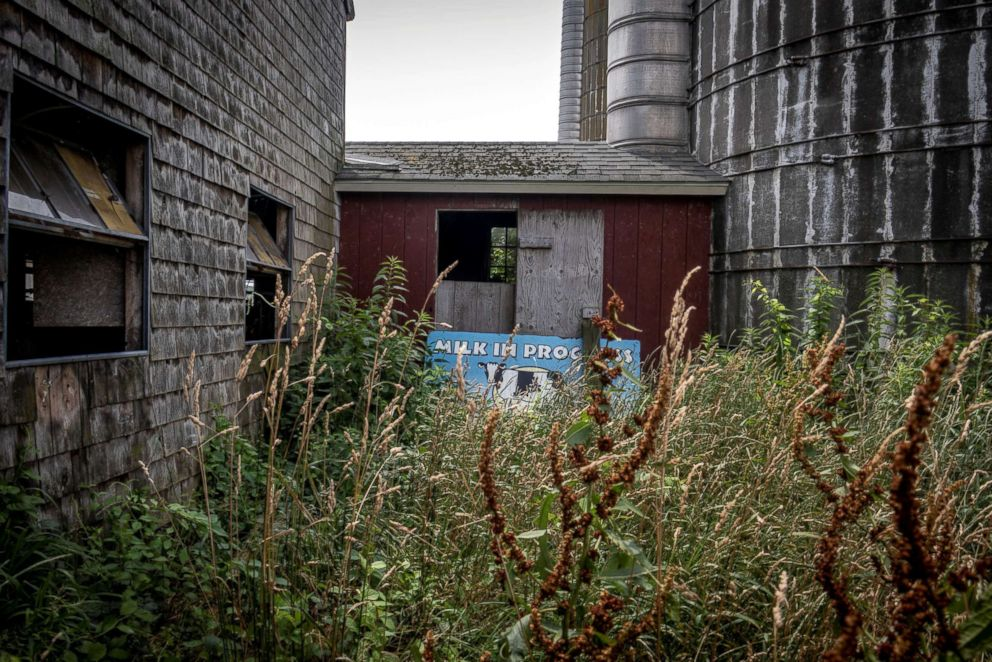 PHOTO: An old Rhody Fresh sign sits in the overgrowth behind the recently closed Cottrell Homestead dairy farm in West Kingston, Rhode Island, July 15, 2018.