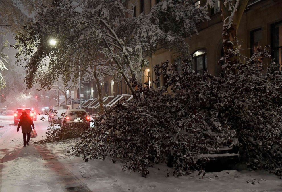 PHOTO: A tree collapsed on top of a parked car in Manhattan on Nov. 15, 2018 in New York.