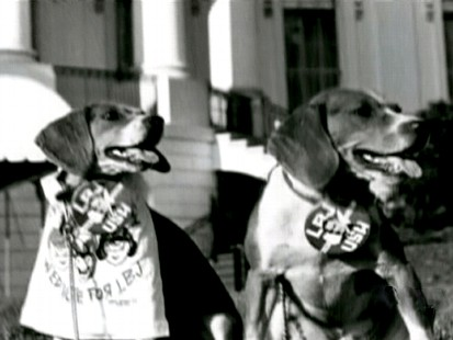 President Johnsons dogs