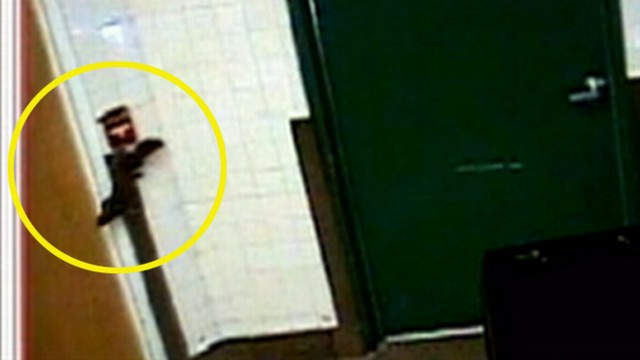 VIDEO: A nutty rodent in Florida set off a fire alarm in a school kitchen.