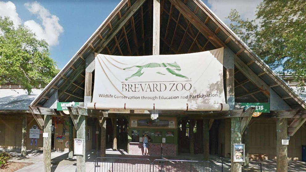 Child injured during 'Rhino Encounter' at Brevard Zoo in Florida