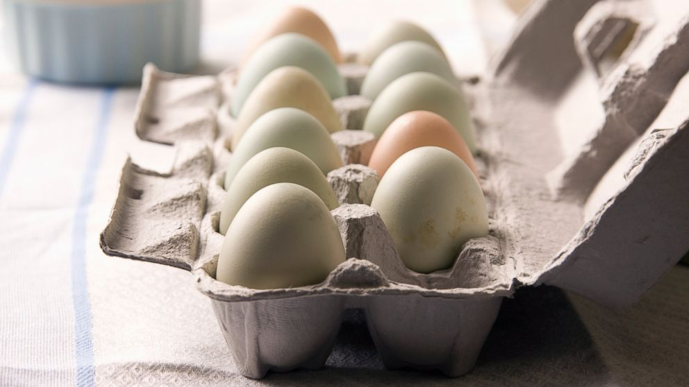 Egg Recall 2020 List.Over 200 Million Eggs Recalled For Salmonella Concerns Sold