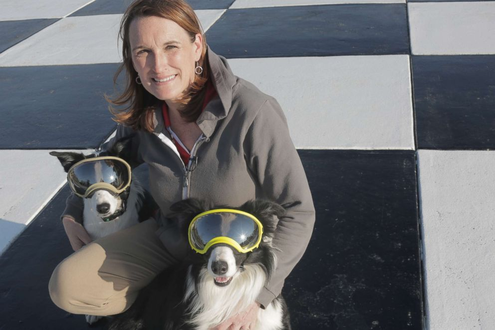 PHOTO: Rebecca Gibson with her border collies, Bett and Greg, who she raised and trained.