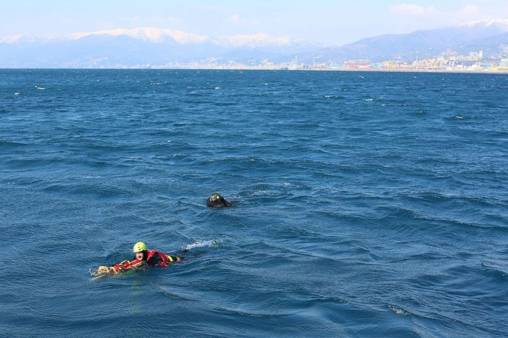 PHOTO: Dog and handler pictured performing water rescue exercise in Genoa, Italy as part of training with the Italian School for Rescue Dogs.