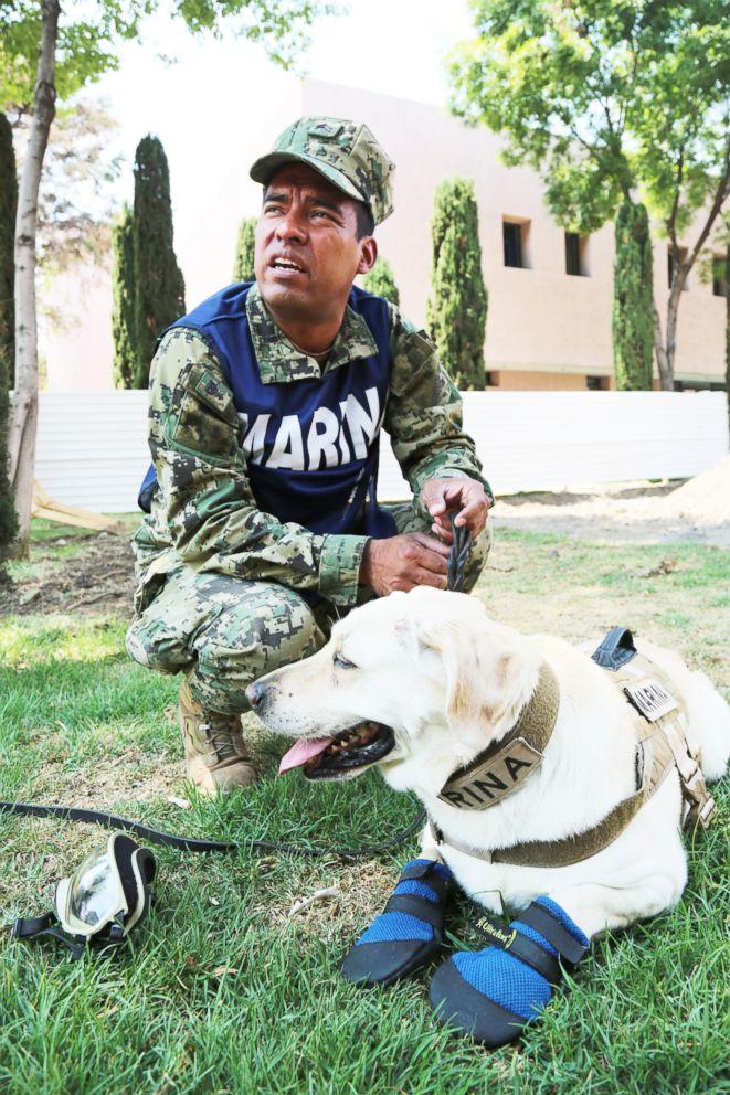 PHOTO: Frida, a rescue dog, takes a break from training alongside her handler, Israel Arauz Salinas, in Mexico City, Mexico.