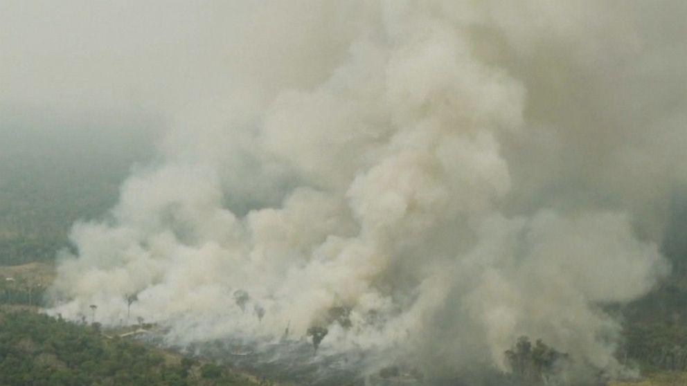 Amazon rainforest keeps burning