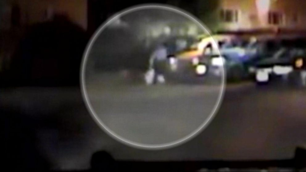 VIDEO: Outrage Over Violent Police Takedown Involving Officers, Police Dog and Unarmed Man