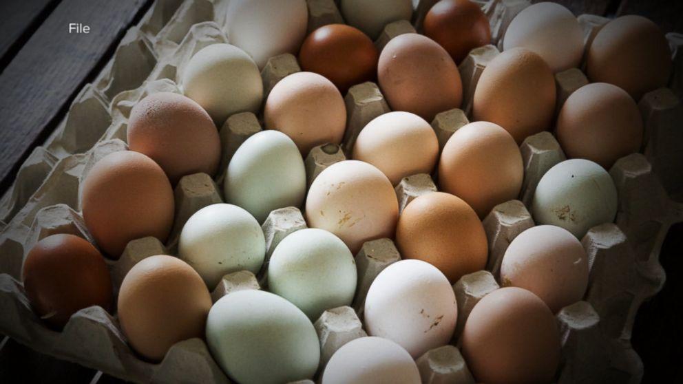 egg recall - photo #45