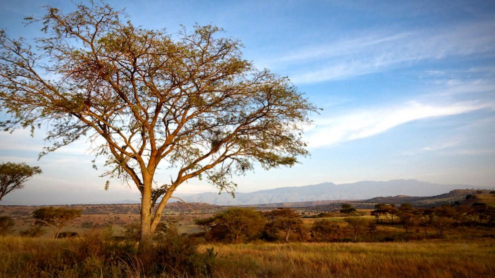American tourist kidnapped in Uganda's Queen Elizabeth National Park