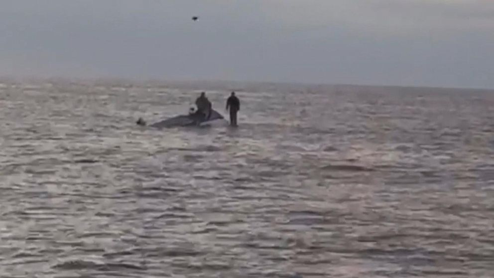 2 Navy SEALs fishing near San Diego rescued after boat capsizes