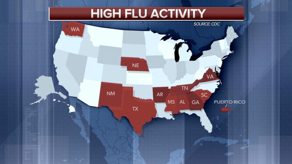 Elevated flu activity in 11 states across the US and Puerto Rico: CDC