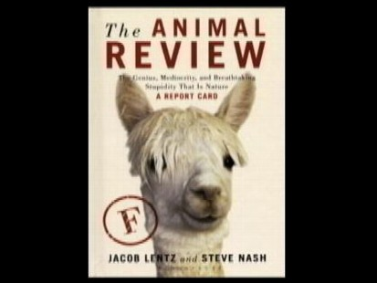Book Cover: The Animal Review