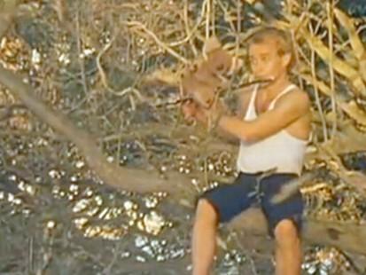 VIDEO: Australian judge rules that an 80s song ripped off an Australian school song.
