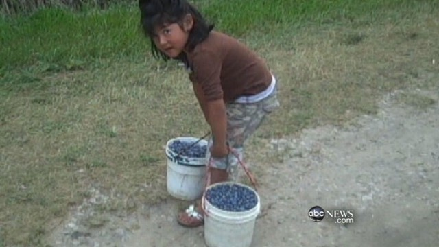 VIDEO: Hidden camera captures young children toiling in fruit and vegetable fields.
