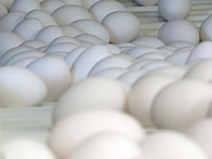 VIDEO: 228 million eggs from one of the countrys biggest producers are being recalled.