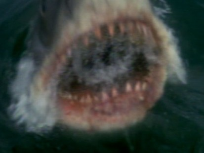 VIDEO:Jaws Turns 35