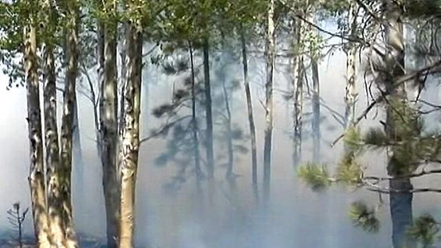 Air Quality Warnings for Arizona