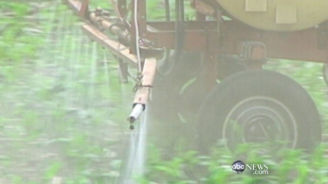 VIDEO: Study finds the risk of certain chemicals could have been underestimated.