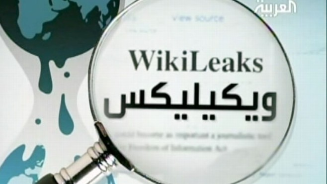 VIDEO: Impact of Wikileaks Report Around the World